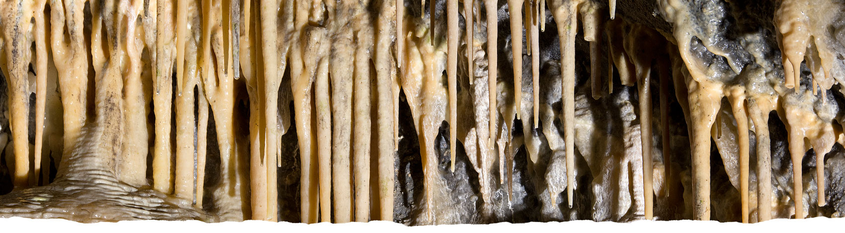 Stalactites at Treak Cliff Cavern